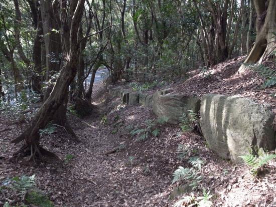170313_08神籠石と車道
