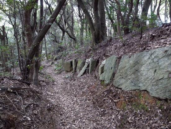 170313_02神籠石