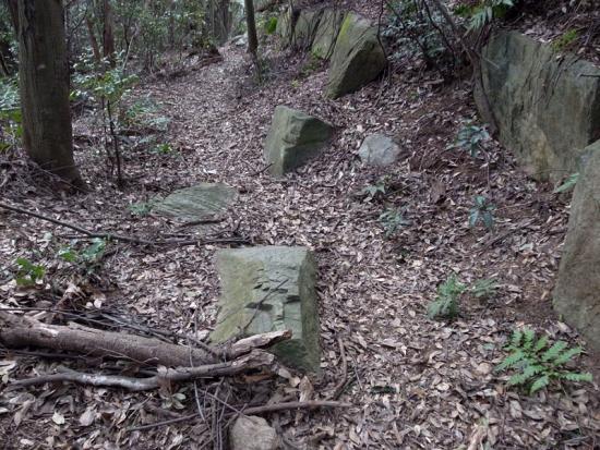 170313_04神籠石