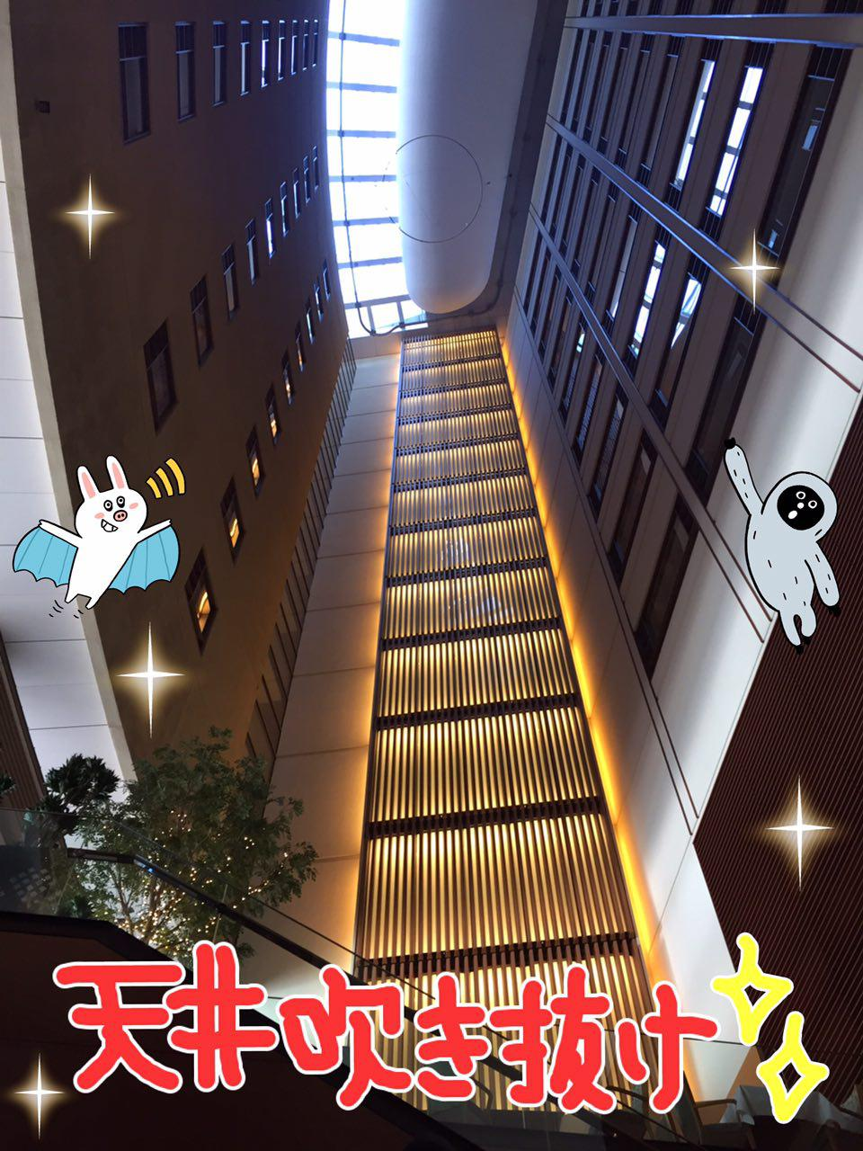 photo_2017-02-15_23-49-30.jpg