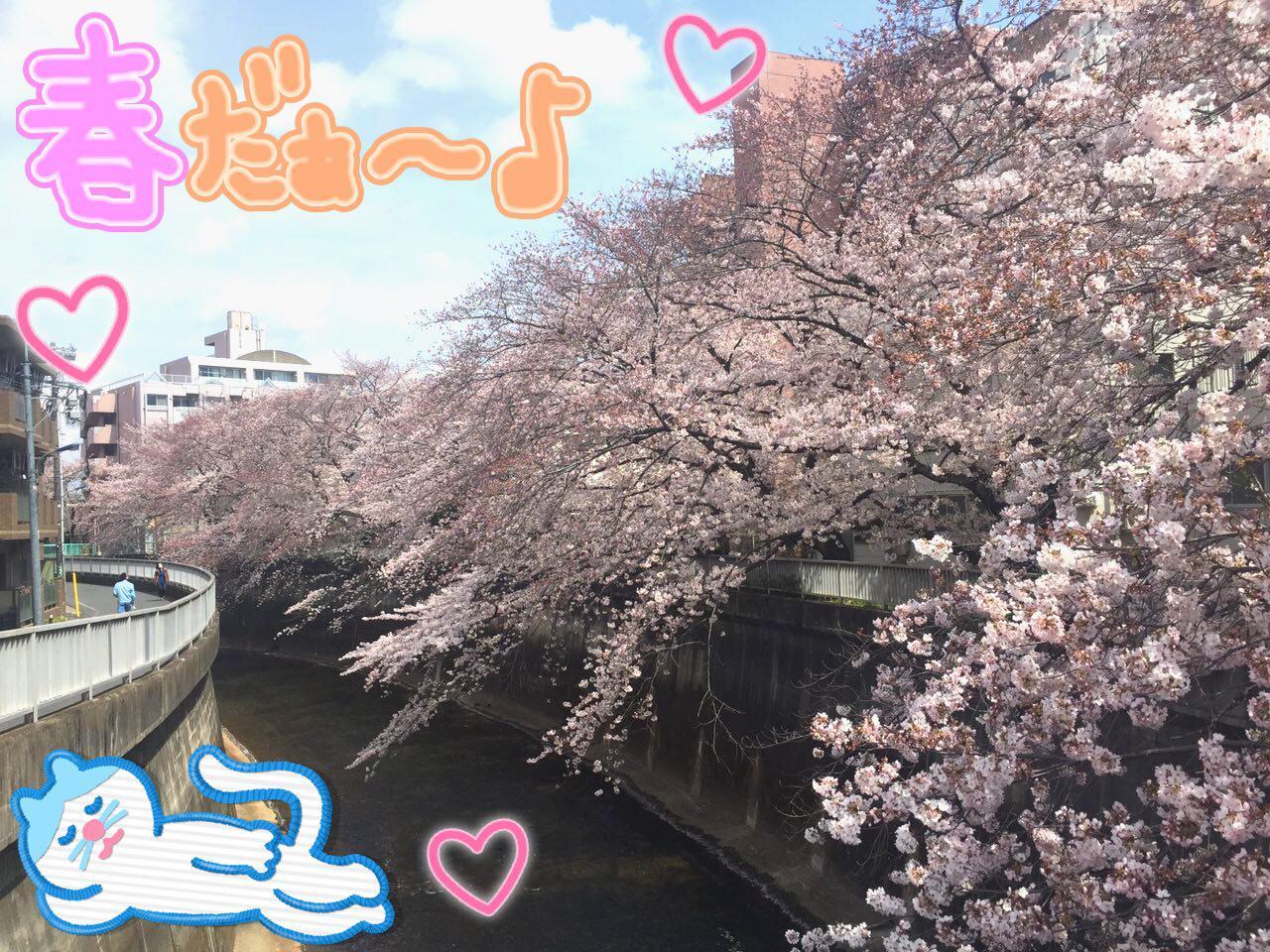 photo_2017-04-06_22-49-52.jpg