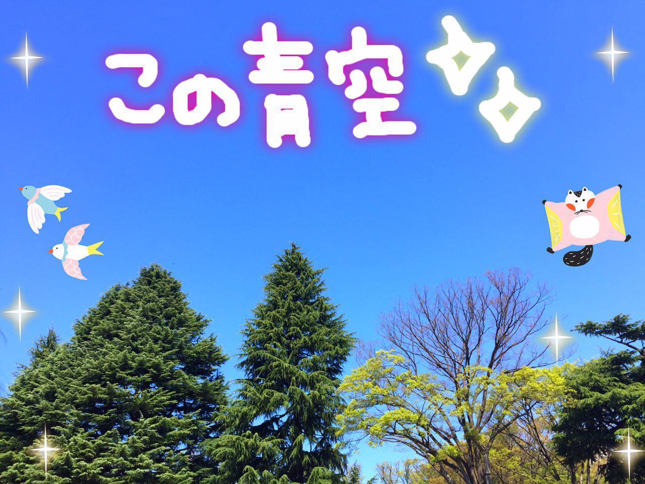 photo_2017-04-24_00-59-55.jpg