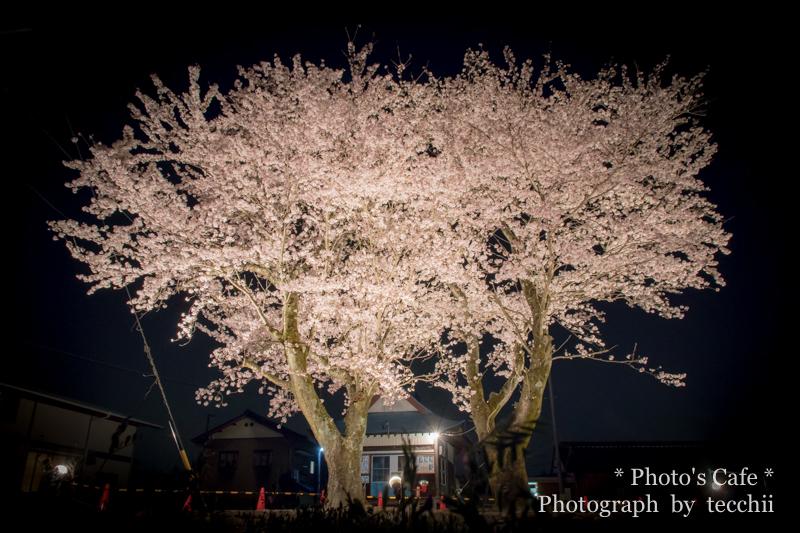 2017-04-14-01954.jpg