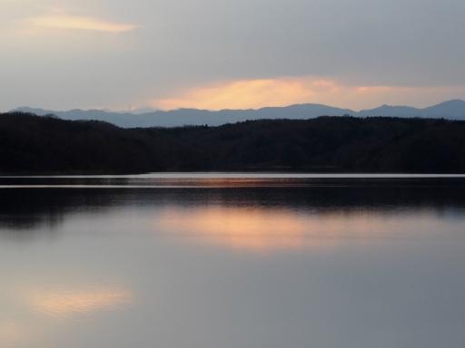 20170218・三寒四温散歩・マガモの湖01