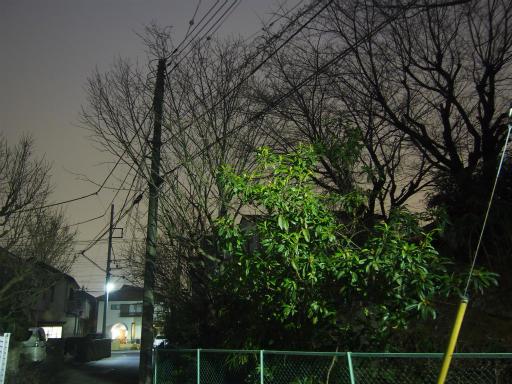 20170305・日没後の空12
