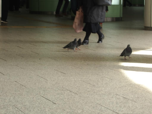 20170304・新宿散歩2-09