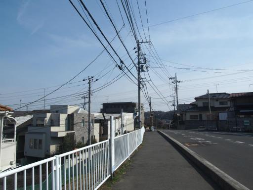 20170312・荒幡多摩湖散歩1-05