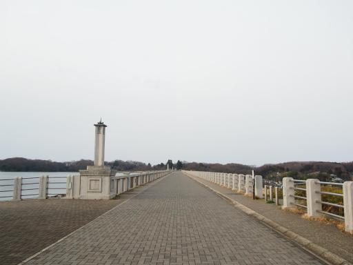 20170318・3月中旬の狭山湖18