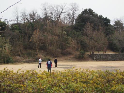 20170318・3月中旬の狭山湖17