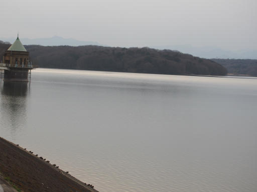 20170318・3月中旬の狭山湖19