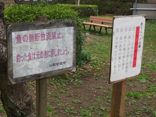 20170401・野山北公園2-04・中