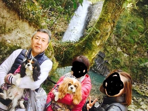 浄蓮の滝3
