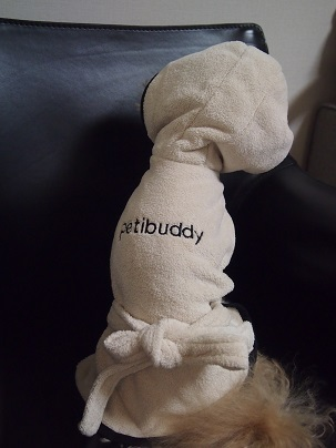 Petibuddy 2017-03 (4)