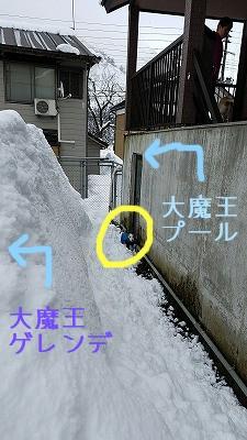 feb113th_52.jpg