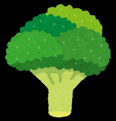 野菜、ブロッコリー
