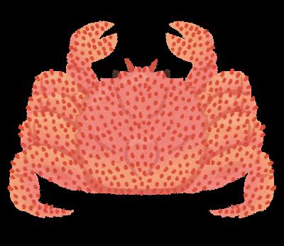 蟹、毛ガニ