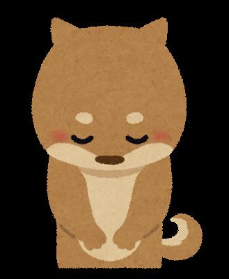 お辞儀、動物、犬