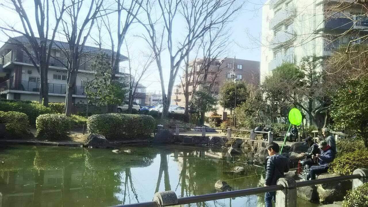 新井薬師公園のひょうたん池