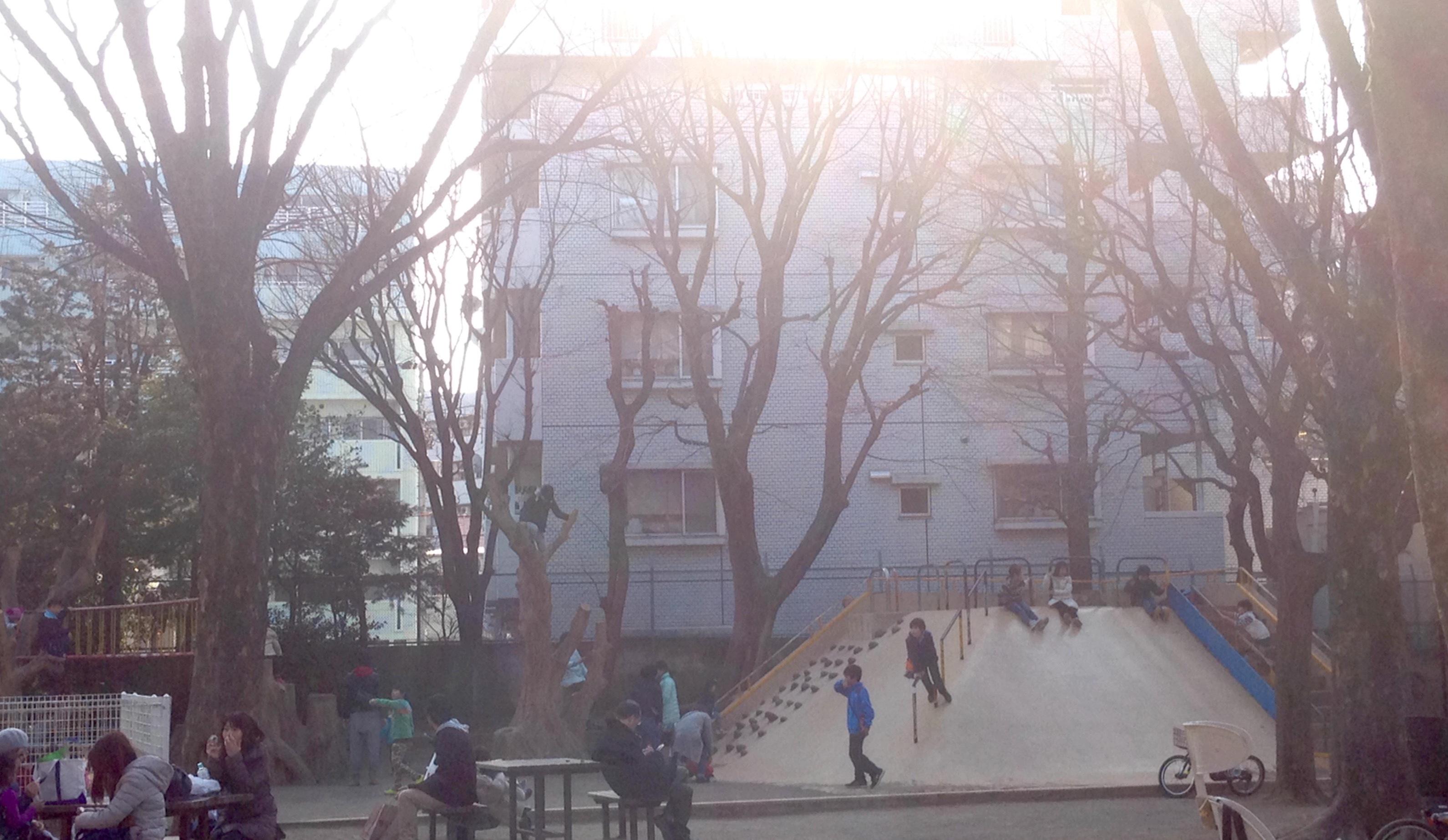 老若男女に愛される 新井薬師公園