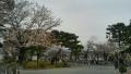 中之島公園④