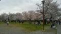 嵐山東公園前