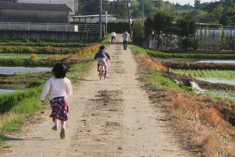 「娘と田植えを見に行きました!」①