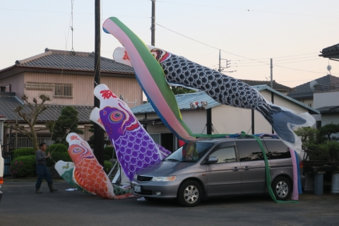 「戸井田家の鯉のぼりが仕事を終わりました!」⑥