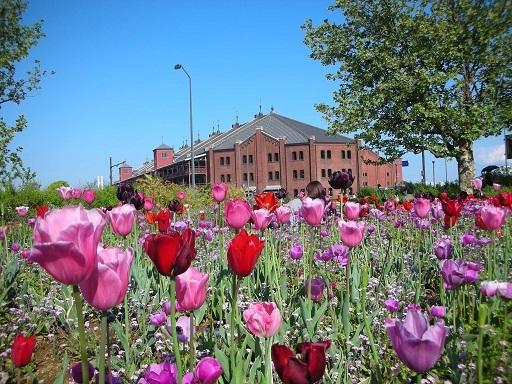 花と赤れんが倉庫