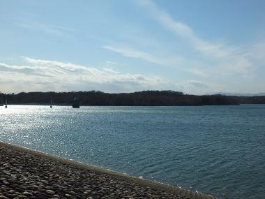 17狭山湖0224