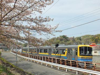 6奈良山公園0415