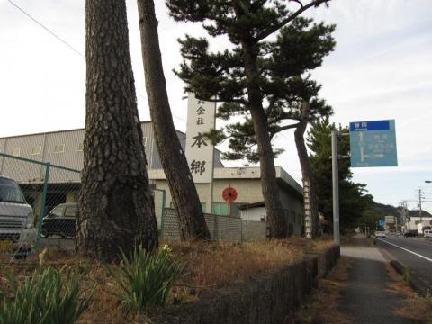 岡部宿の松並木