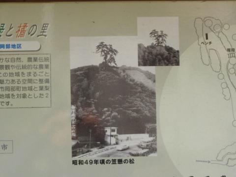昭和49年頃の笠懸松