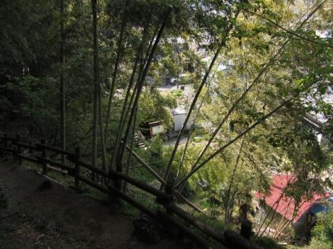 笠懸松登山道