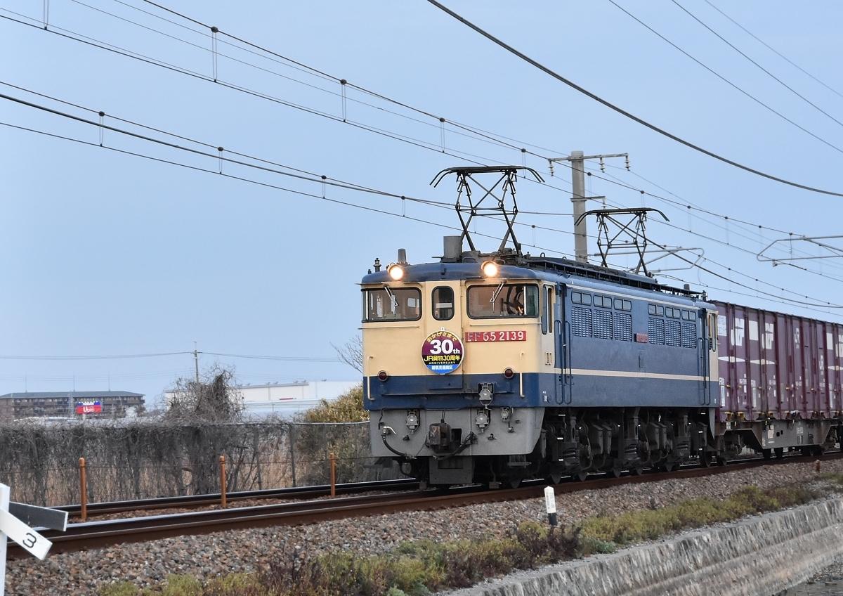 DSC_7995.jpg