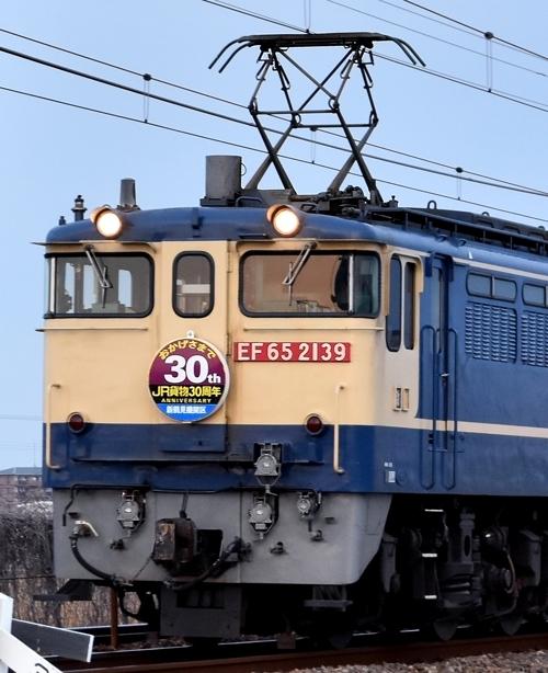 DSC_7998.jpg