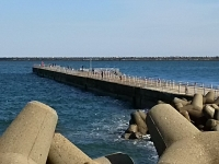 170224_鹿島港釣旅02