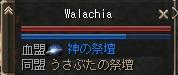 kamiflag