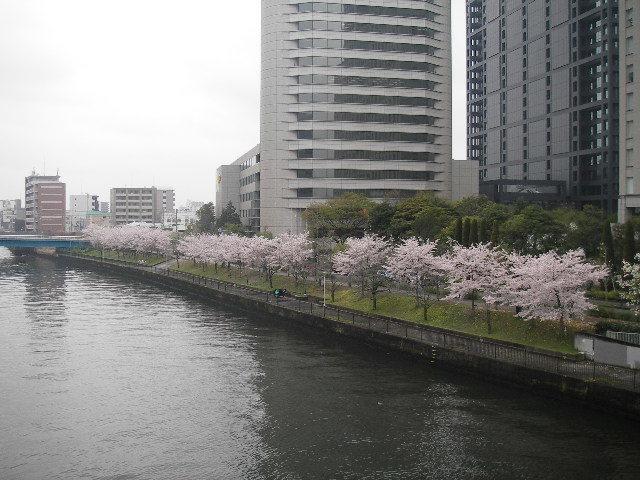 京橋201704-1