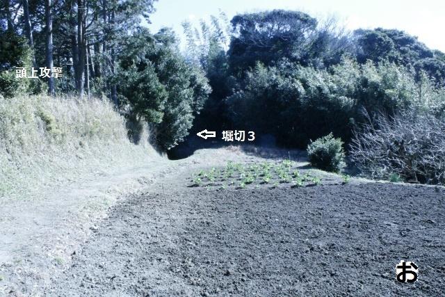 _MG_3610.jpg