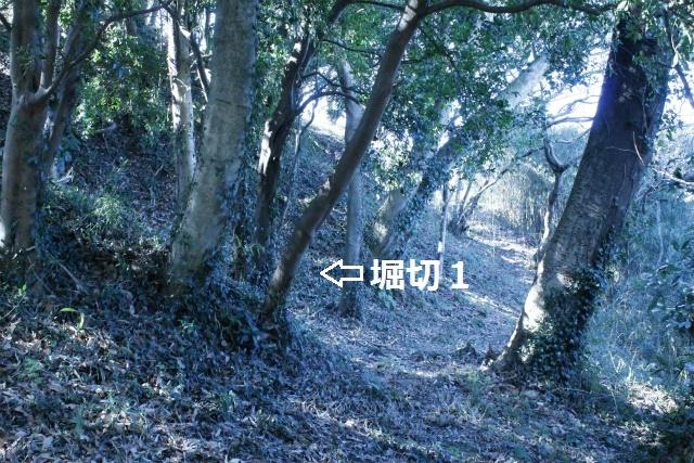 _MG_3666.jpg