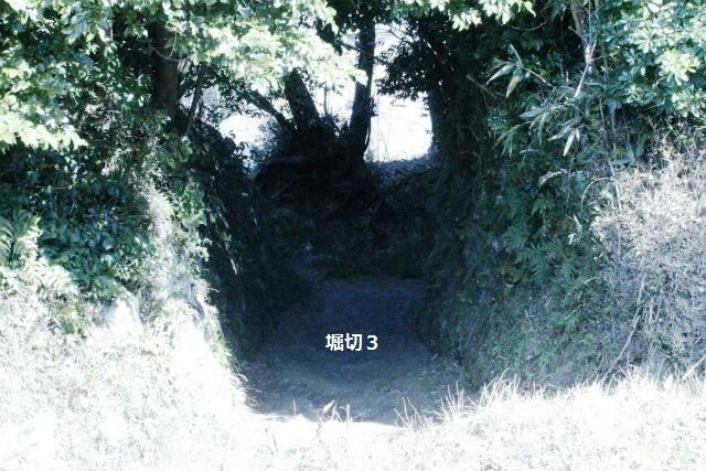 _MG_3691.jpg