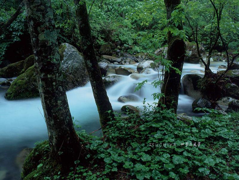 須砂渡渓谷