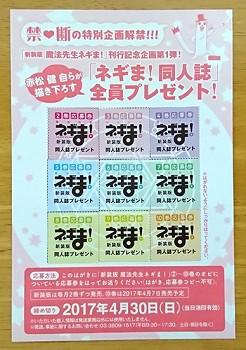 新装版 ネギま! 9巻・10巻_04