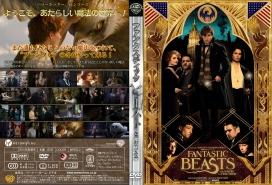 FantasticBeastDVDJ003.jpg