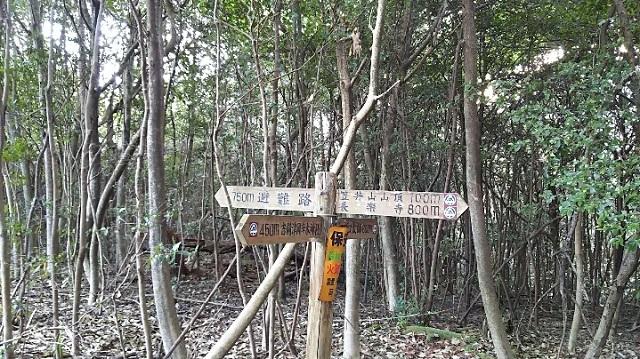 170308 操山、笠井山⑬ ブログ用