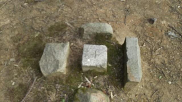 170315 種松山山頂公園⑤ ブログ用