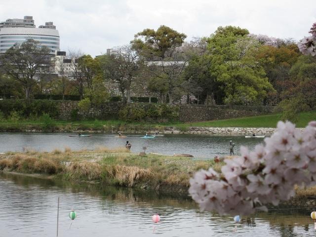 170409 桜①