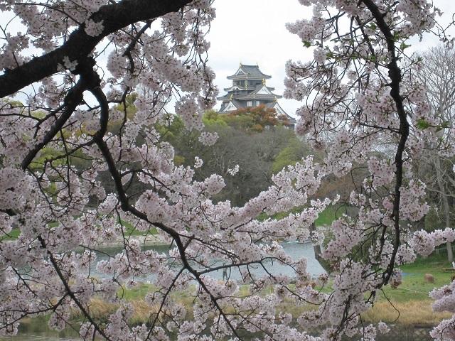 170409 桜②