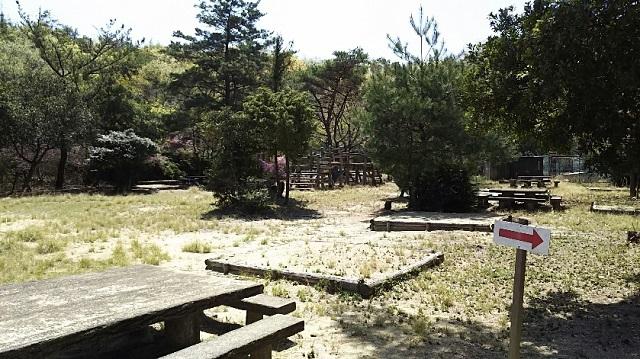 170419 剣山、貝殻山⑭ ブログ用