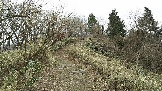 170503 那岐山~滝山⑰ ブログ用
